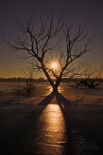 Sonnenaufgang im Frost